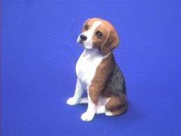 beagle sandicast