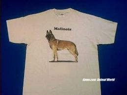 belgian malinois t shirt body