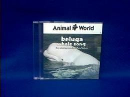 beluga whale sounds