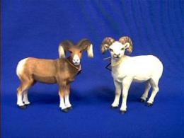 big horn sheep and dall sheep figurine