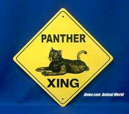 black panther crossing sign