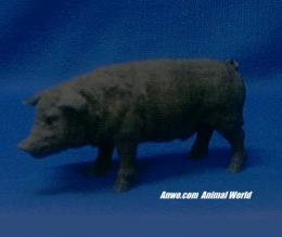 black pig figurine statue small
