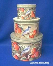 bluejay stacking boxes