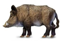 boar-toy-miniature-replica.jpg