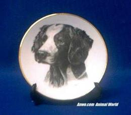 brittany spaniel plate porcelain