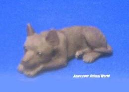 brown chihuahua figurine statue