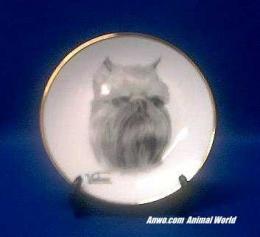 brussels griffon plate porcelain
