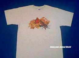 cardinal t shirt pair