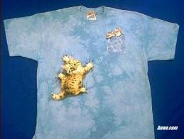cat t shirt kitten with mice