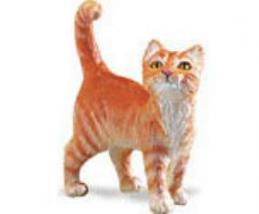 cat toy miniature orange tabby