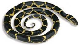 chain kingsnake toy replica