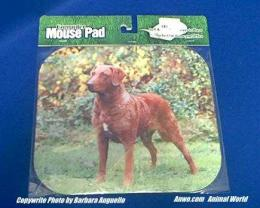 chesapeake bay retriever mouse pad