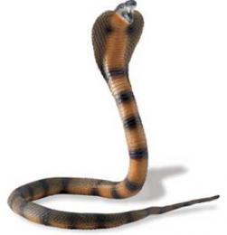 cobra toy snake posable replica