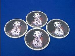 dalmatian picture coasters