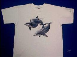 dolphin shirt animal world
