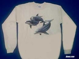 dolphin sweatshirt usa