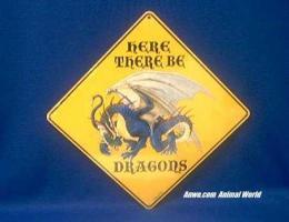 dragon crossing sign