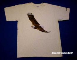 eagle t shirt usa