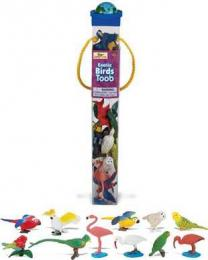 exotic birds toy tube jungle bird