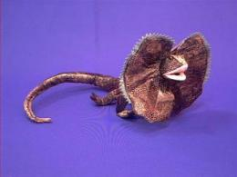 frilled lizard stuffed animal plush