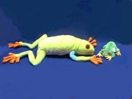 red eyed tree frog stuffed animal plush large