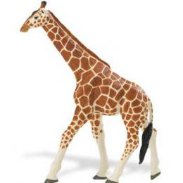 giraffe-toy-animal-ww.jpg