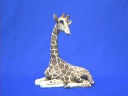 giraffe sandicast