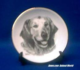 golden retriever plate porcelain