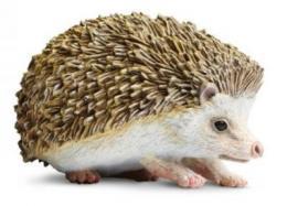 hedgehog toy miniature replica anwo