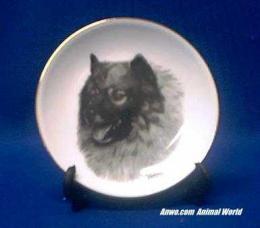 keeshond plate porcelain