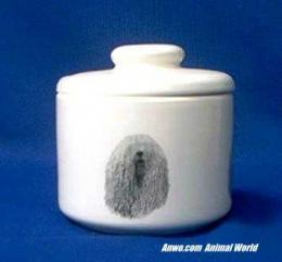 komondor jar porcelain