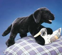 black lab dog puppet black labrador
