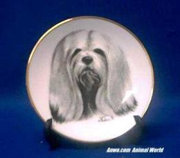 lhasa apso plate porcelain