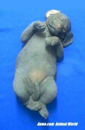 lifesize chocolate lab puppy figurine ls347