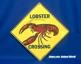 red lobster crossing sign