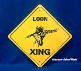 loon crossing sign