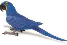 macaw_toy_hyacinth.jpg