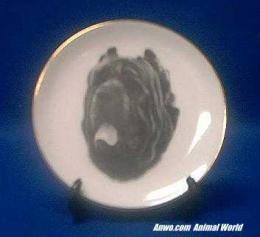 mastiff napolitano plate porcelain