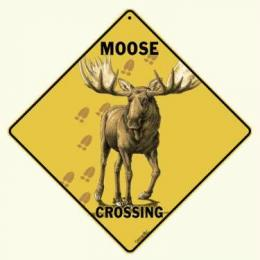 moose crossing sign anwo animal world