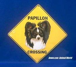 papillon crossing sign color