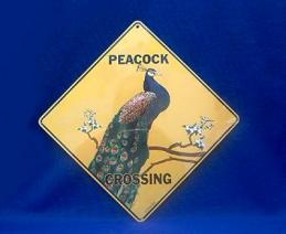peacock crossing sign color