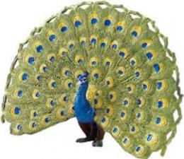 peacock toy miniature replica