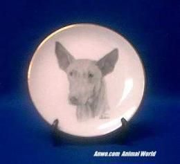 pharaoh hound plate porcelain