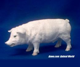 white pig figurine statue small
