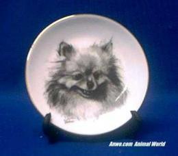 pomeranian plate porcelain