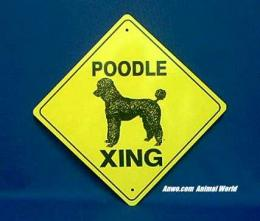 poodle crossing sign warning
