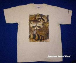 raccoon t shirt usa