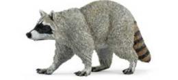 raccoon toy animal