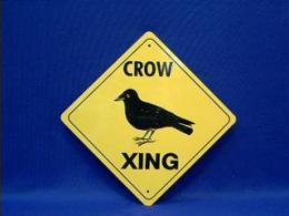 crow crossing sign raven