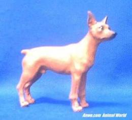 red-miniature-pinscher-figruine.JPG
